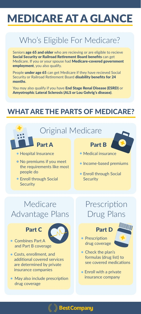 Medicare Overview Infographic